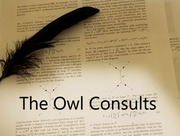 The Owl Consults
